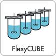 symbol_product_flexycube